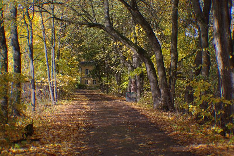 """фото """"Осенняя дорога."""" метки: пейзаж, осень"""