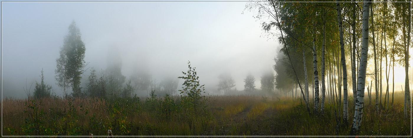 """фото """"Утро туманное 11"""" метки: пейзаж, закат, осень"""