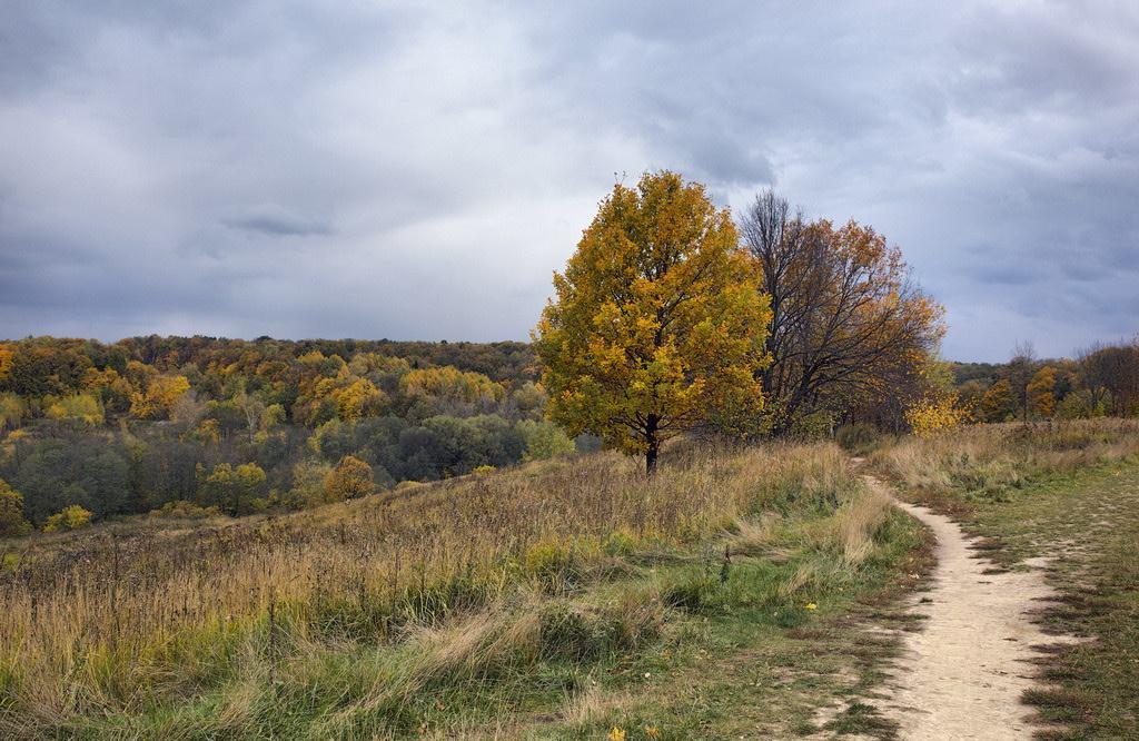 """фото """"У природы есть... :)"""" метки: пейзаж, осень"""
