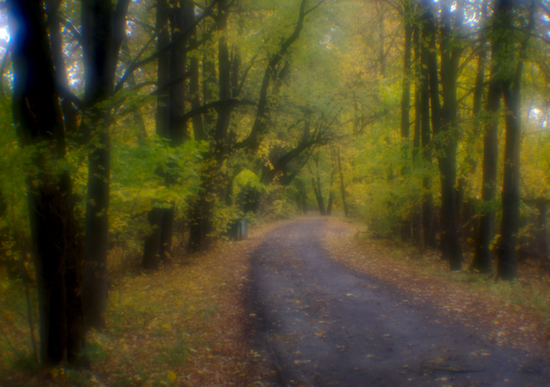 """фото """"Поворот."""" метки: пейзаж, осень"""