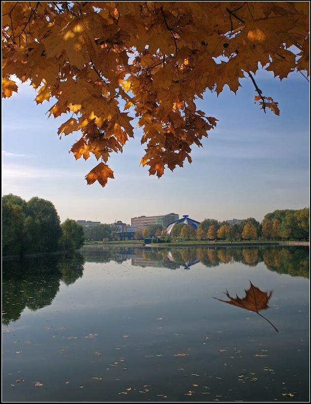 "фото ""Танец осеннего листа"" метки: пейзаж, вода, осень"