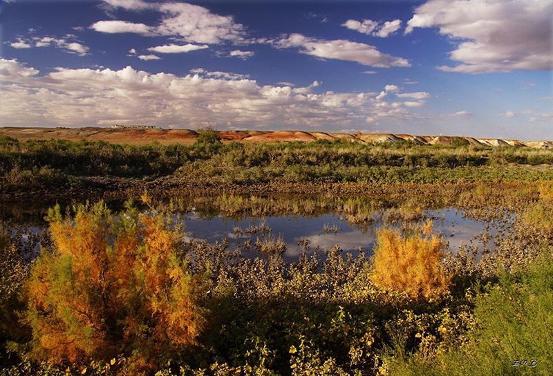"""фото """"осень в степи"""" метки: пейзаж, вода, осень"""