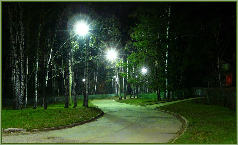 """фото """"улица ак. Трофимука"""" метки: пейзаж, ночь"""