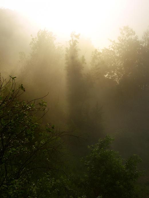 """фото """"Туманный рассвет"""" метки: пейзаж, закат, осень"""