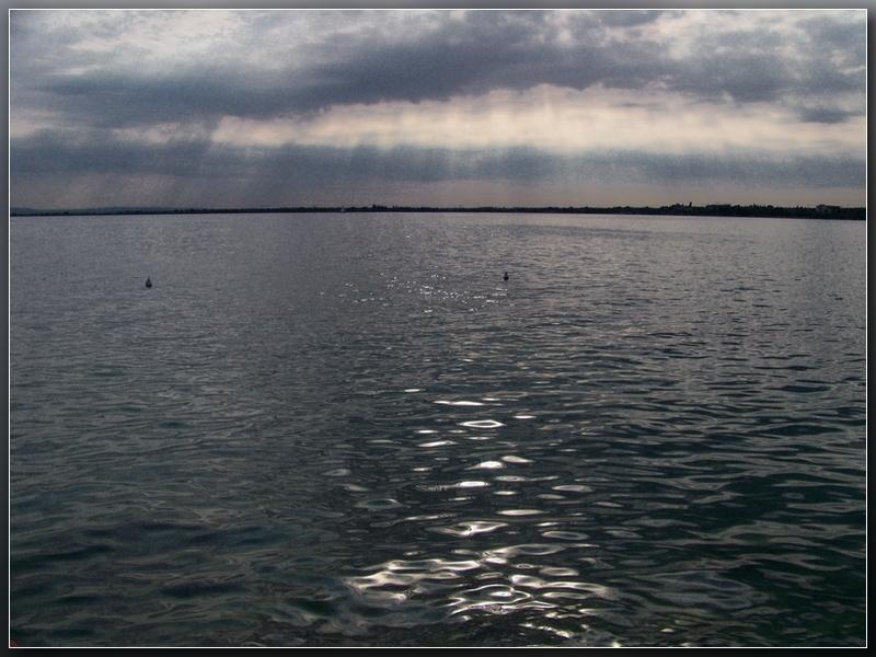 """фото """"Над тёмной водой."""" метки: пейзаж, вода"""