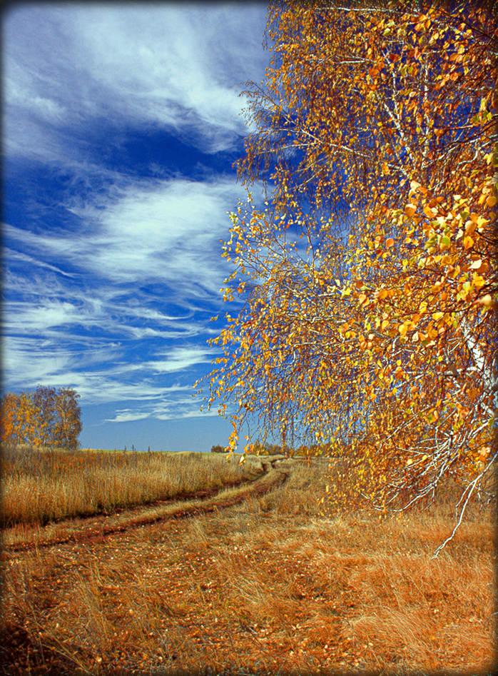 """фото """"Осени дороги."""" метки: пейзаж, осень"""
