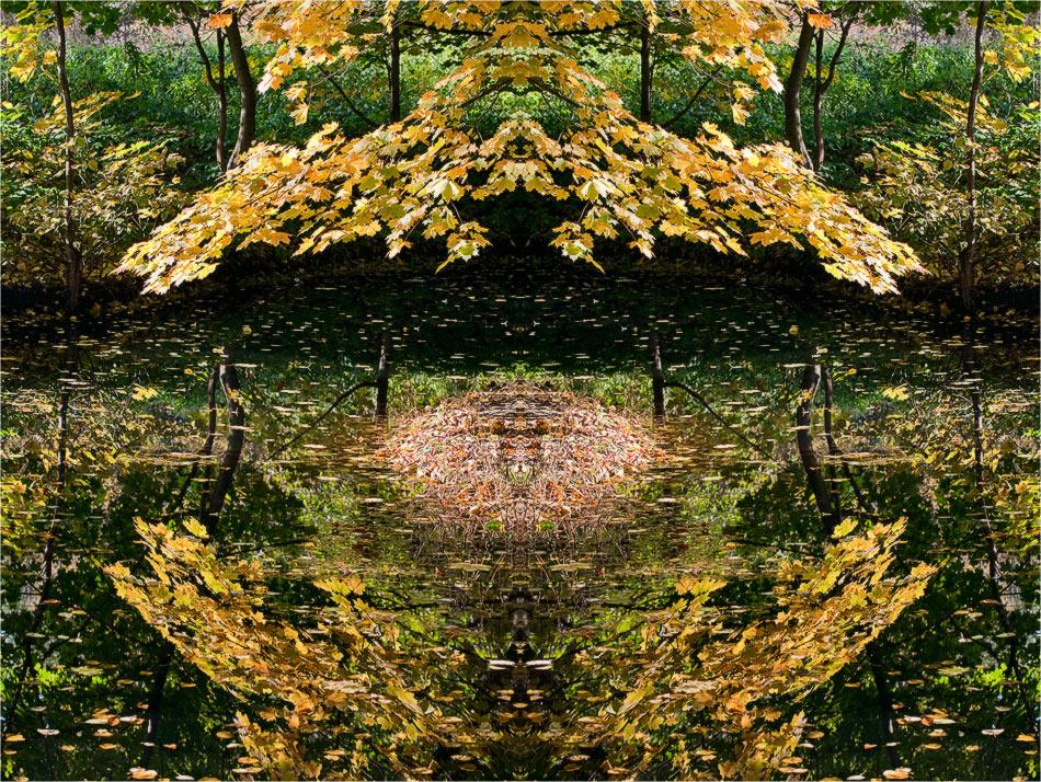 """фото """"Осенняя колыбель"""" метки: абстракция, фотомонтаж,"""