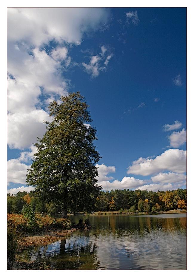 """фото """"У самого берега"""" метки: пейзаж, осень"""
