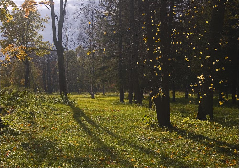 """фото """"осенний свет"""" метки: пейзаж, осень"""