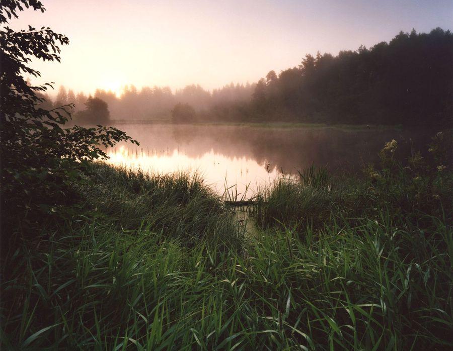 """фото """"Запруда на рассвете"""" метки: пейзаж, закат, лето"""