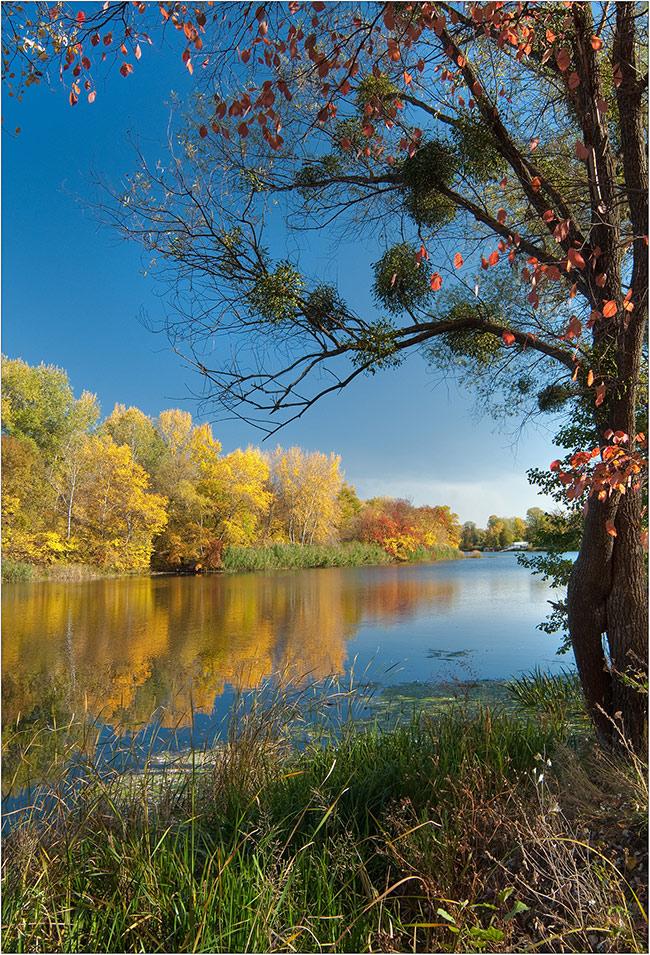 "фото ""так ведь ... осень"" метки: пейзаж, осень"