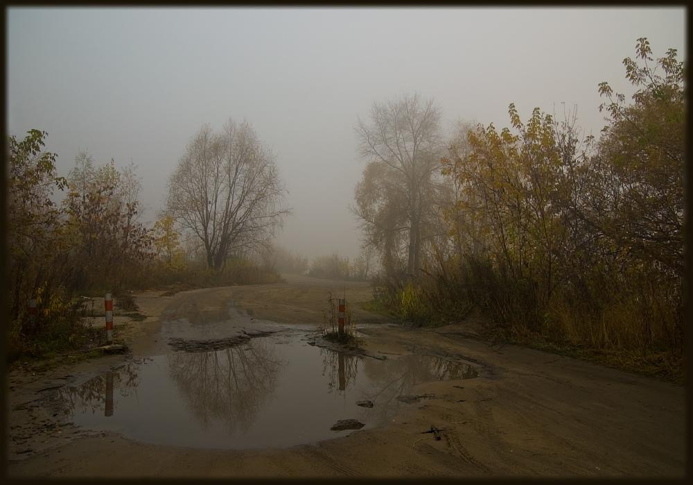 """фото """"Въезд в туман"""" метки: пейзаж, лес, осень"""