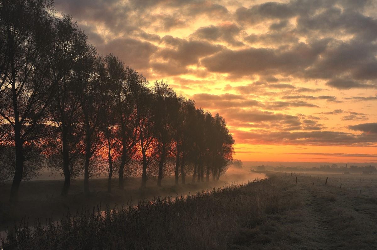 "фото ""Misty morning."" метки: пейзаж, закат"