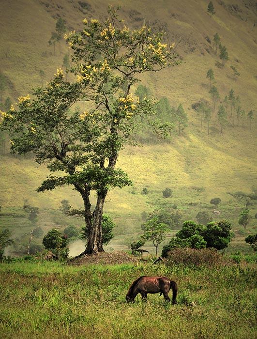 "фото ""Fairy Tale"" метки: пейзаж, горы"