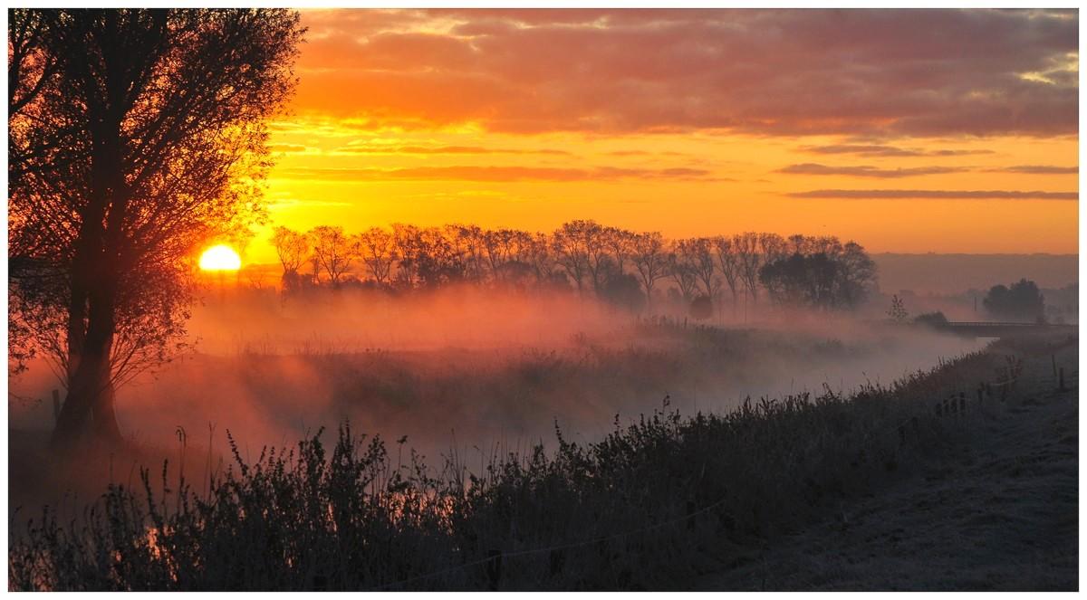 "фото ""Golden fog."" метки: пейзаж, закат"