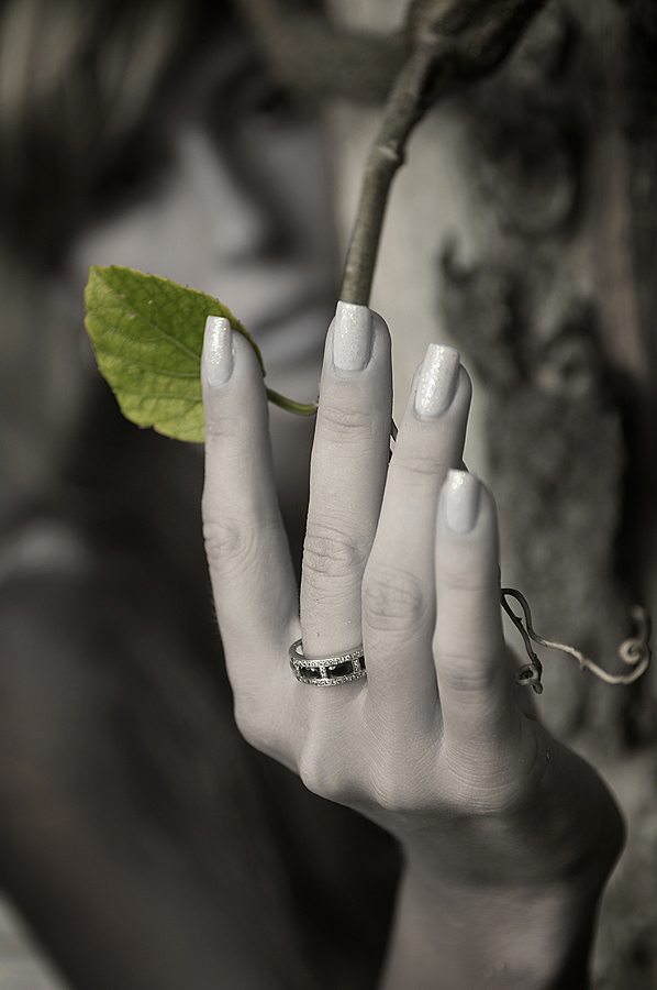 "фото ""GREEN"" метки: жанр, природа, цветы"