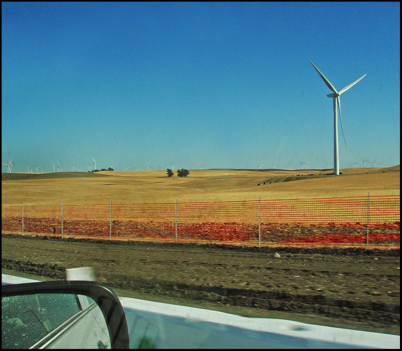 "фото ""Калифорния за окном"" метки: пейзаж,"