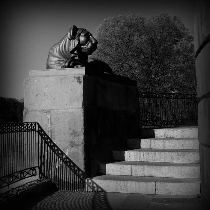 """фото """"IMG_2801"""" метки: черно-белые, фрагмент,"""