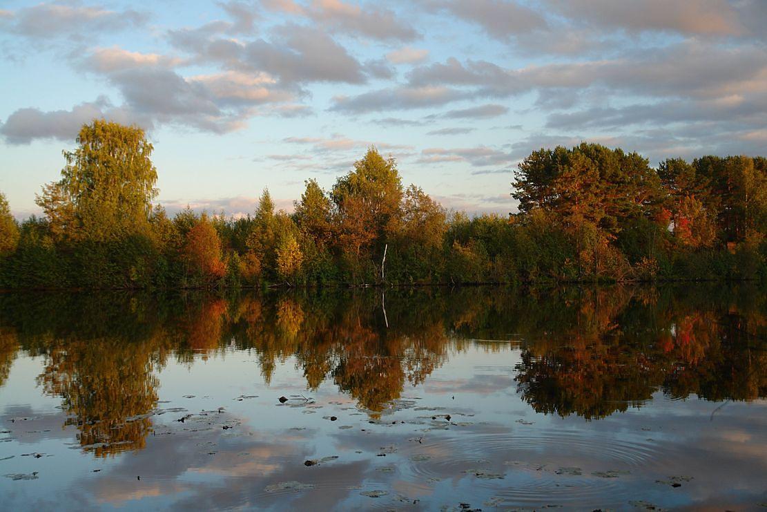 """фото """"Отражение."""" метки: пейзаж, вода"""