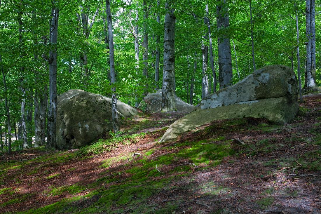 "фото ""в скалах Довбуша"" метки: пейзаж, лето"