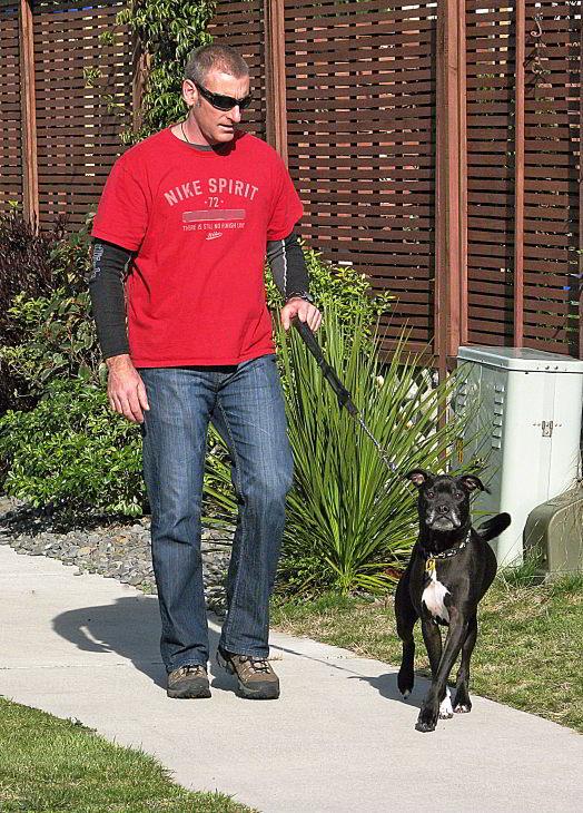 """фото """"Walking the Dog"""" метки: разное,"""