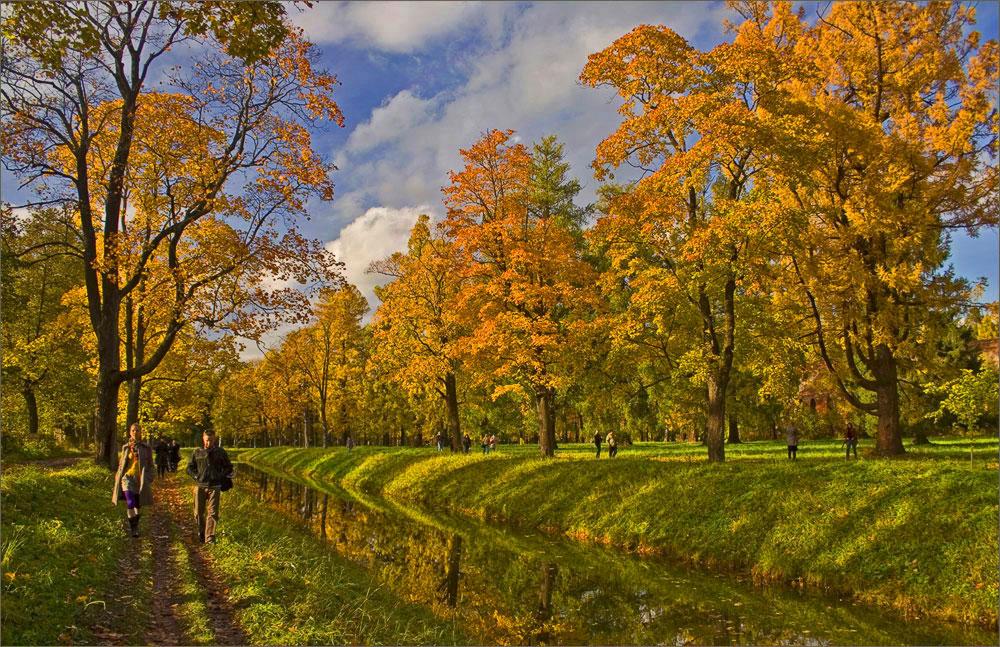 "фото ""золотая пора"" метки: пейзаж, осень"