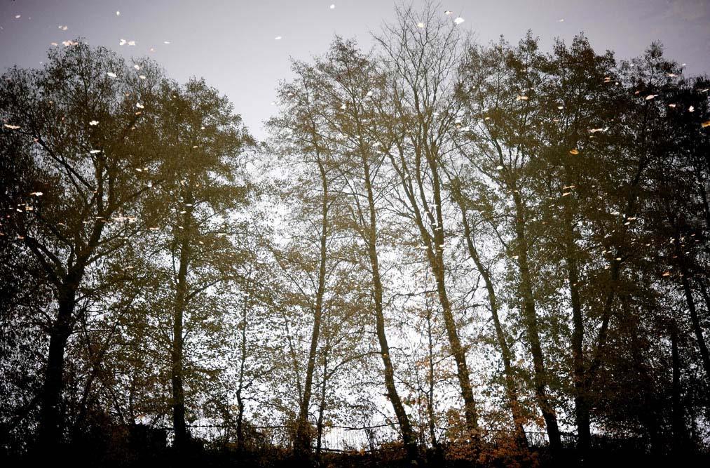 """фото """"Отражение"""" метки: пейзаж, вода"""