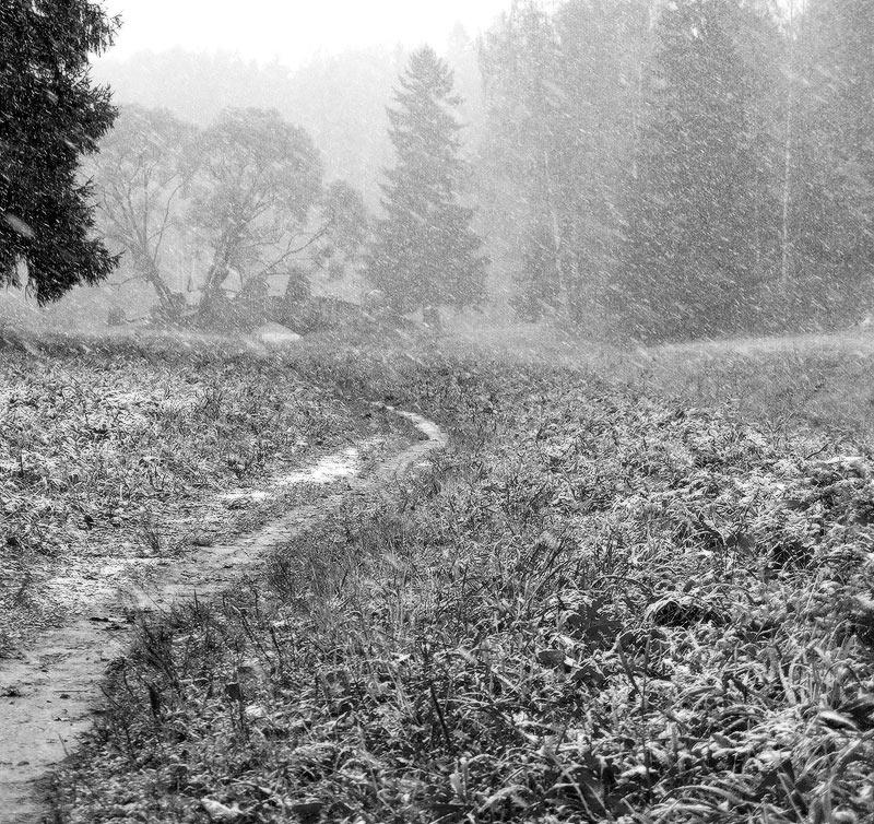 """фото """"Первый снег"""" метки: пейзаж, черно-белые,"""