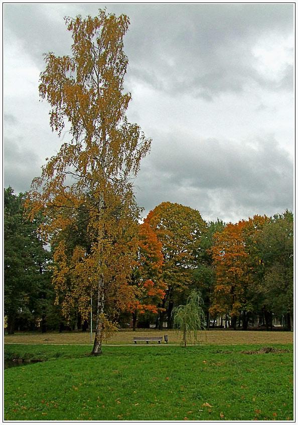 "фото ""В парке осень 2"" метки: пейзаж, осень"