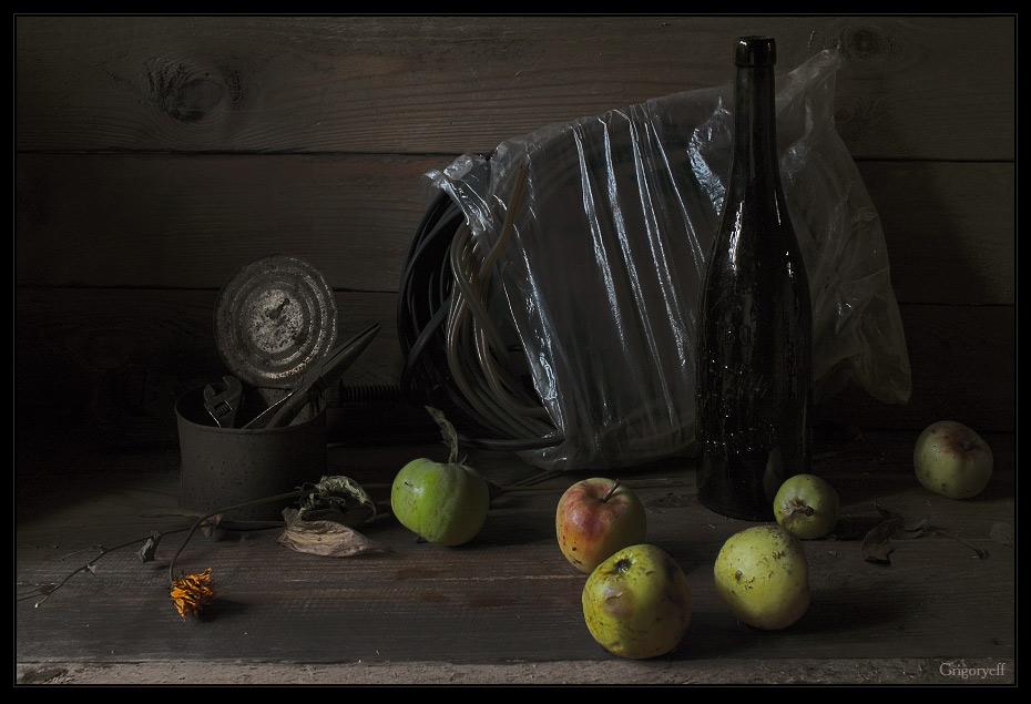 """фото """"Собрать упавшие яблоки"""" метки: натюрморт,"""