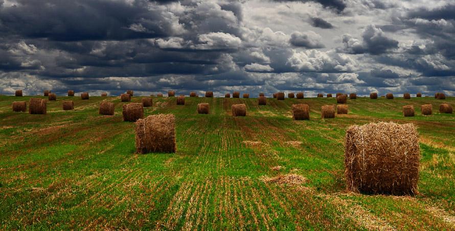 """фото """"До свиданья, лето, до свидания..."""" метки: пейзаж, облака, осень"""