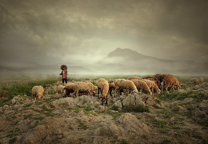 """photo """"Shepherd"""" tags: landscape, portrait, mountains"""