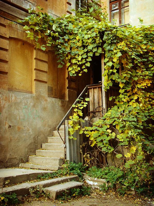 """фото """"осенние цвета"""" метки: пейзаж, осень"""