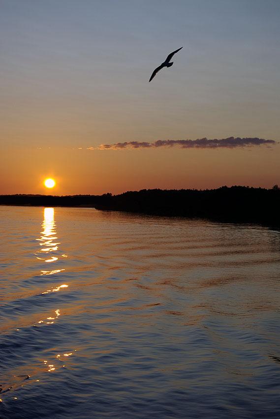 """фото """"Закат на реке Свирь"""" метки: пейзаж, вода, закат"""