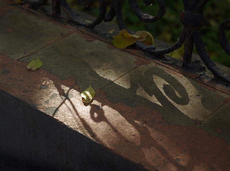 """фото """"Прогулки по осени"""" метки: город, фрагмент,"""