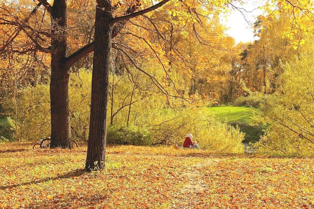 """фото """"отдых"""" метки: пейзаж, осень"""