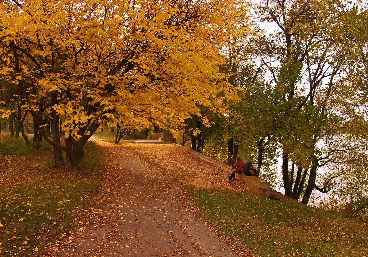 "фото ""В парке осень..."" метки: пейзаж, осень"