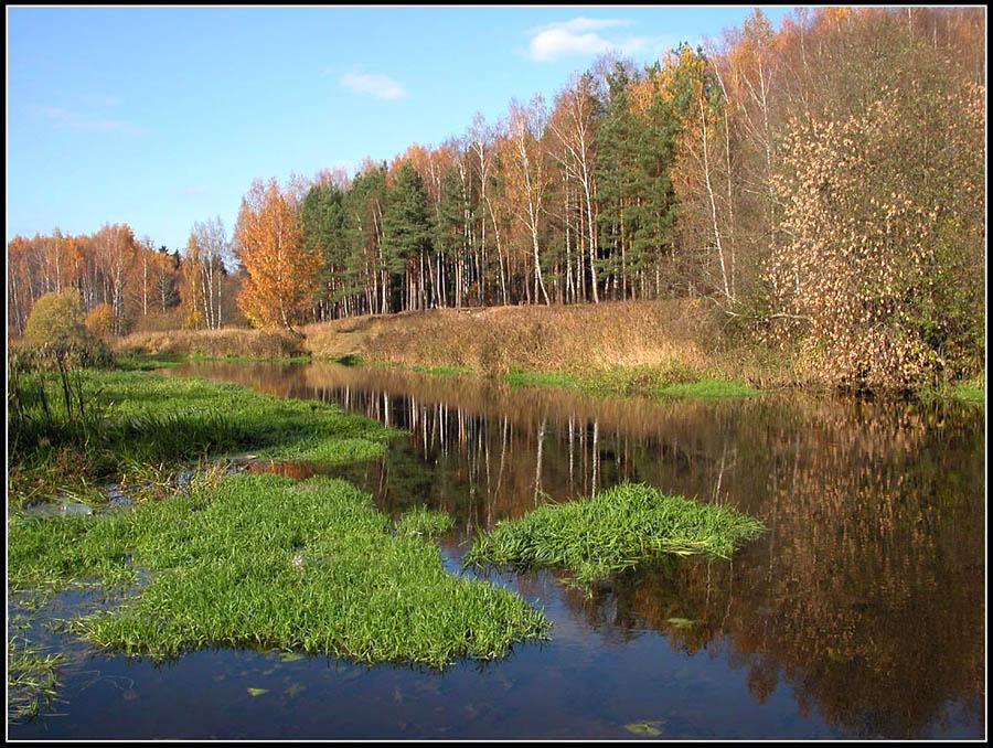 """фото """"Октябрь под Москвой"""" метки: пейзаж, вода, лес"""