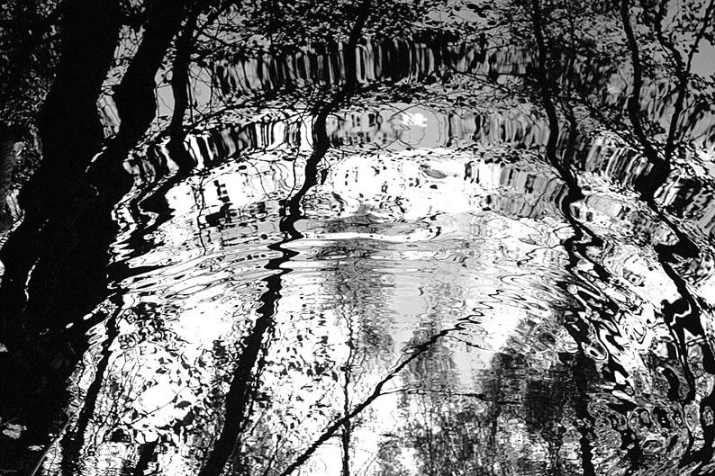 "фото ""у омута"" метки: пейзаж, черно-белые, вода"