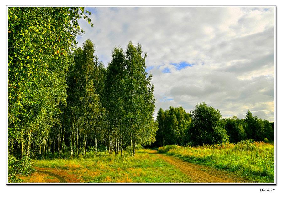 """фото """"осенняя"""" метки: пейзаж, лес"""