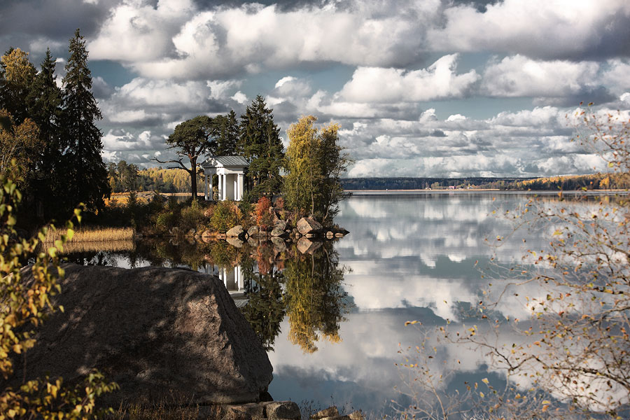 "фото ""Монрепо"" метки: пейзаж, лес"