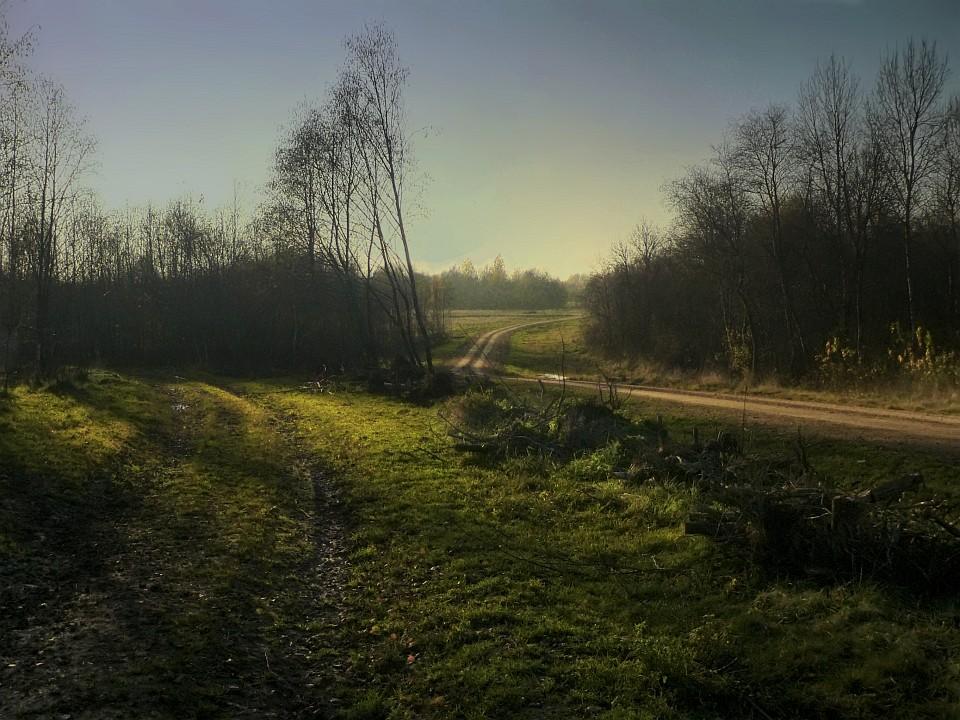 """фото """"Свой путь"""" метки: пейзаж, осень"""