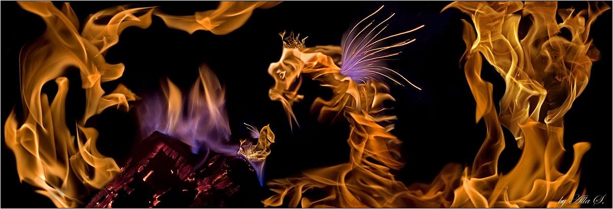 """фото """"Рождение огненного Дракончика"""" метки: абстракция, фотомонтаж,"""