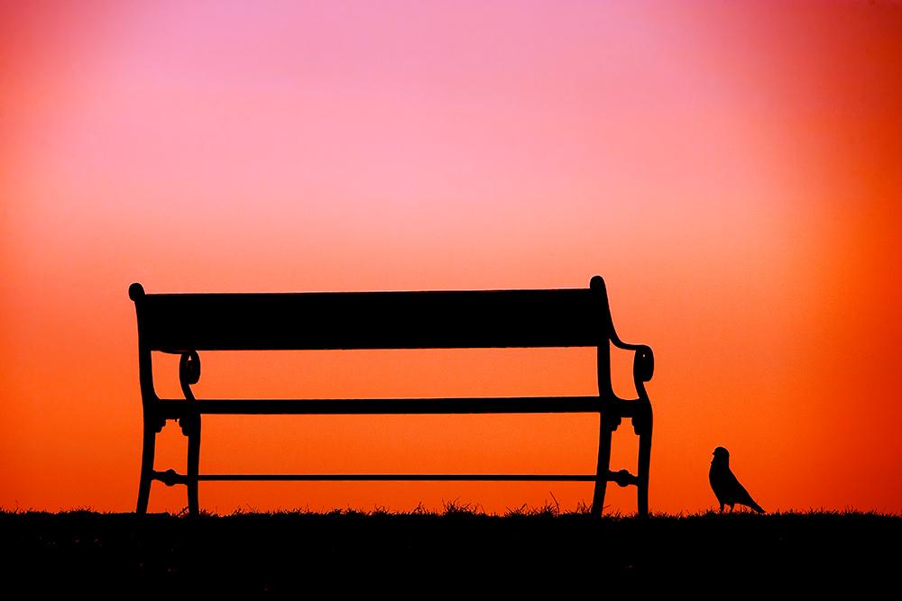 "фото ""The Bench..."" метки: абстракция,"