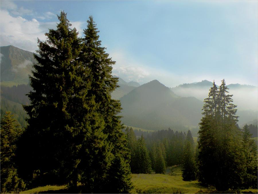 "фото ""Landscape from Switzerland"" метки: пейзаж, горы"