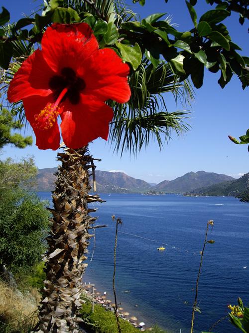 "фото ""View on The Sea"" метки: пейзаж, вода, лето"