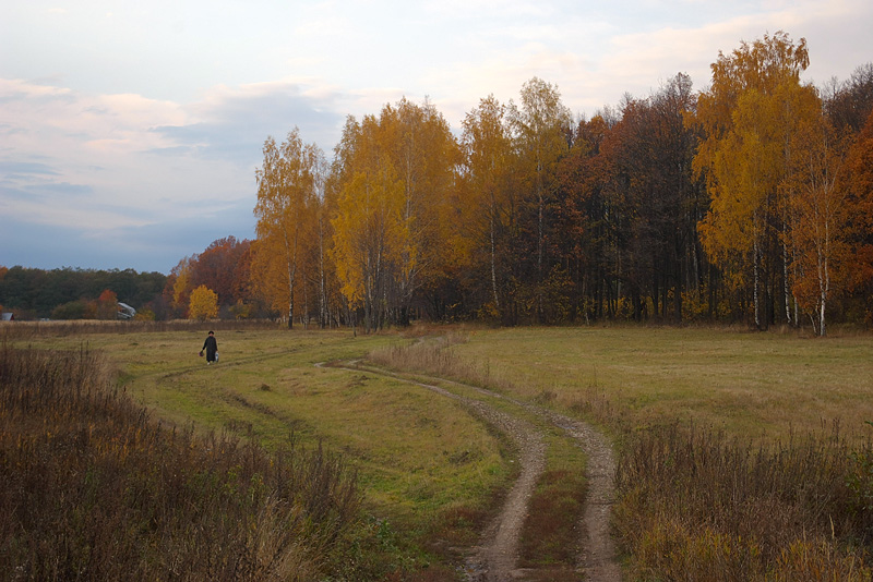 """фото """"Осенние дороги."""" метки: пейзаж, осень"""