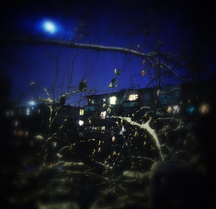 """фото """"Зима стучится..."""" метки: разное, город,"""