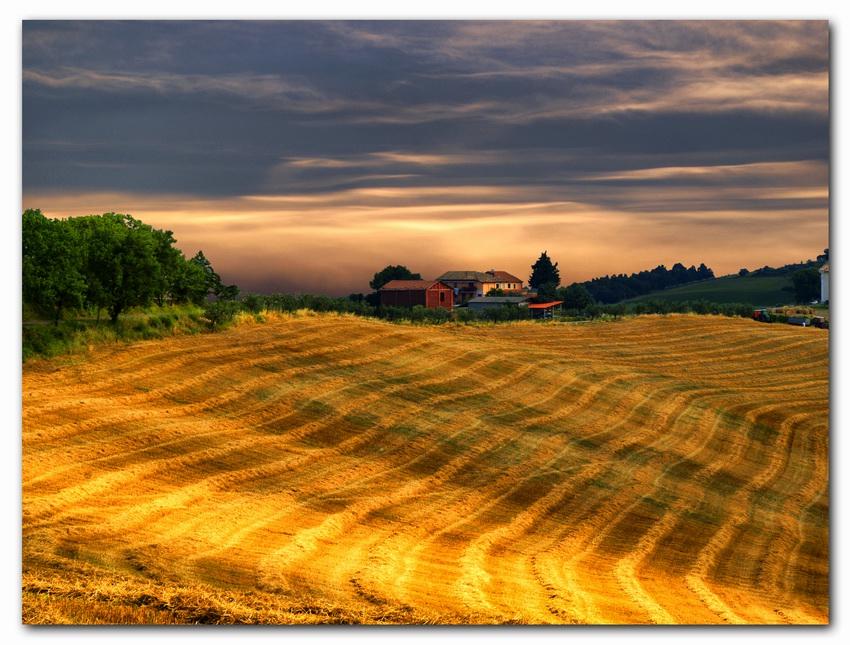 """фото """"Fields"""" метки: пейзаж,"""