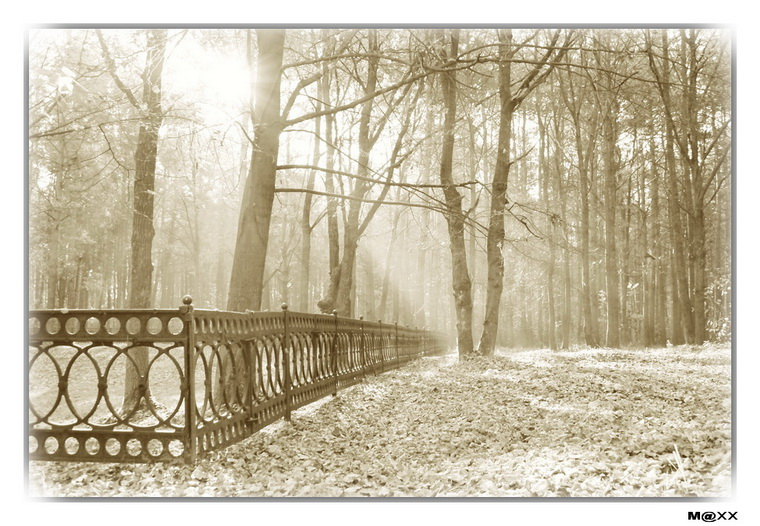 """фото """"#"""" метки: черно-белые, пейзаж,"""